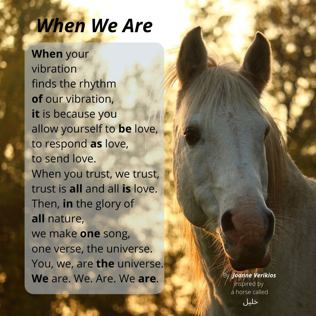 When We Are. A poem by Joanne Verikios, inspired by a horse called خليل
